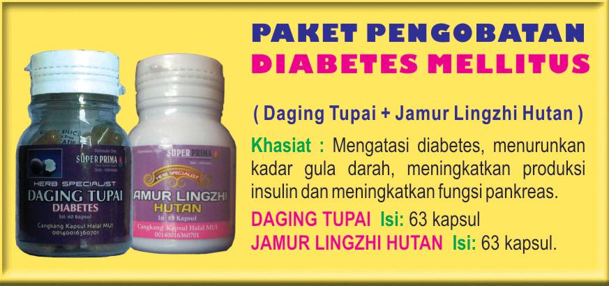 herbal diabetes mellitus