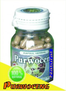 Herbal Purwaceng