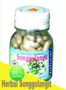 Herbal songgolangit