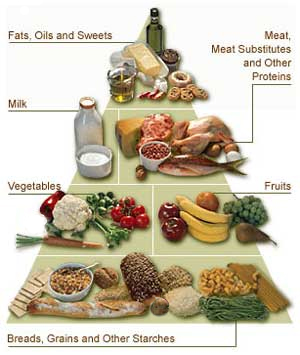 Healthy Diet for Diabetes Mellitus