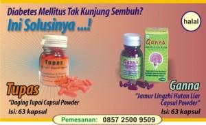 obat-herbal-kencing-manis