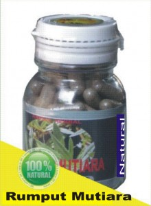 herbal rumput mutiara
