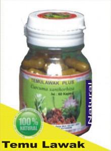 herbal tanaman temulawak