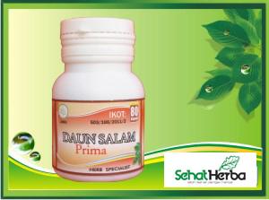 herbal daun salam