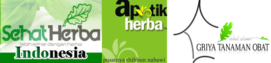 produsen-herbal-indonesia-dan-tanaman-obat-tradisional1