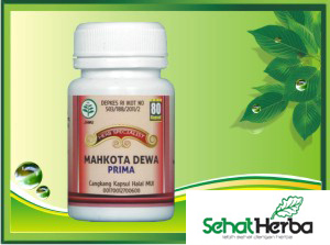 herbal mahkota dewa