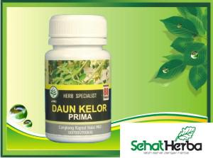obat herbal kapsul daun kelor