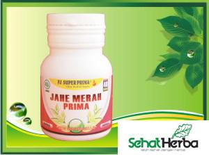 obat herbal kapsul jahe merah