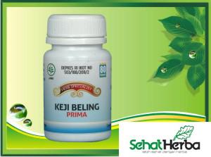 obat herbal kapsul keji beling