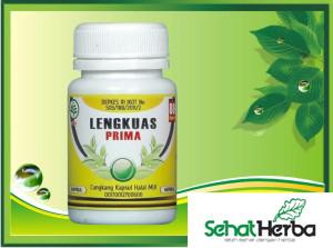 obat herbal kapsul lengkuas
