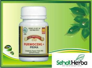 obat herbal kapsul purwoceng