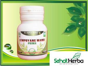 obat herbal lempuyang wangi kapsul