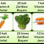 Herbal Daun Kelor Moringa