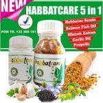 Obat Herbal Habbat Care 5 in 1